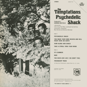 temptationspsychedelicshackback